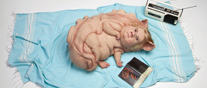 Patricia Piccinini: Curious Affection On Tour